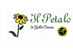 il-petalo-fiori-e-piante