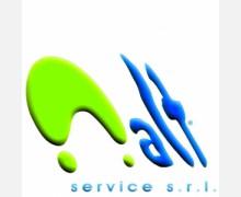 alt-service